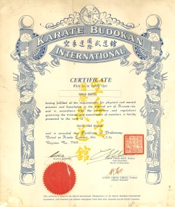 Serge Ermoll Jr Budokan Karate Black Belt certificate